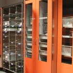 cupboards for containers and for trays/baskets